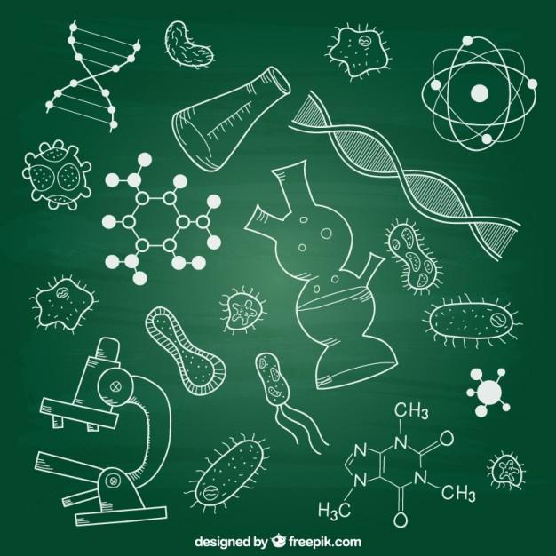 Как быстро выучить биологию перед экзаменом