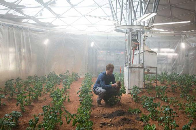 Марсианская почва настолько богата, что в ней вполне можно выращивать любые земные растения. Правда, только в земных условиях...