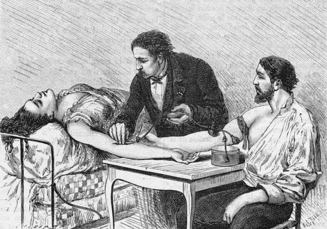 Определение группы крови: реферат по биологии расскажет, как это начало происходить у людей