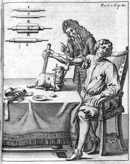 Первое переливание для определения группы крови: биология с барашком