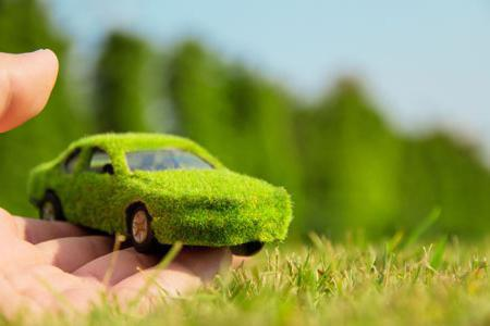 Экология как теоретическая основа рационального природопользования
