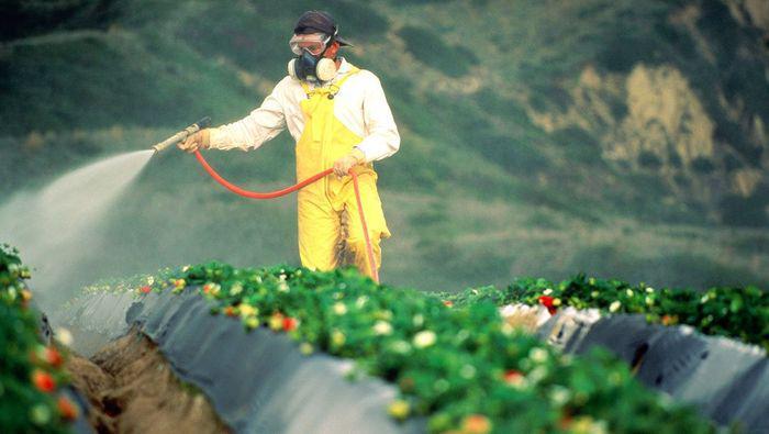 Свою долю в загрязнение почвы вносят удобрения