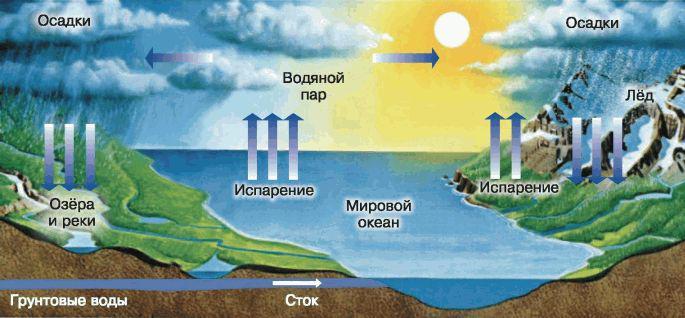 В таком виде происходит круговорот воды