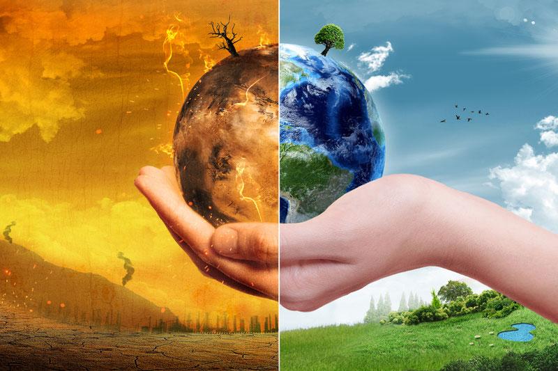 реферат на тему основы экологии