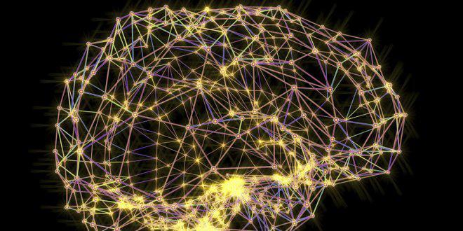 Существует много данных о том, как влияет изучение иностранного языка на мозг.