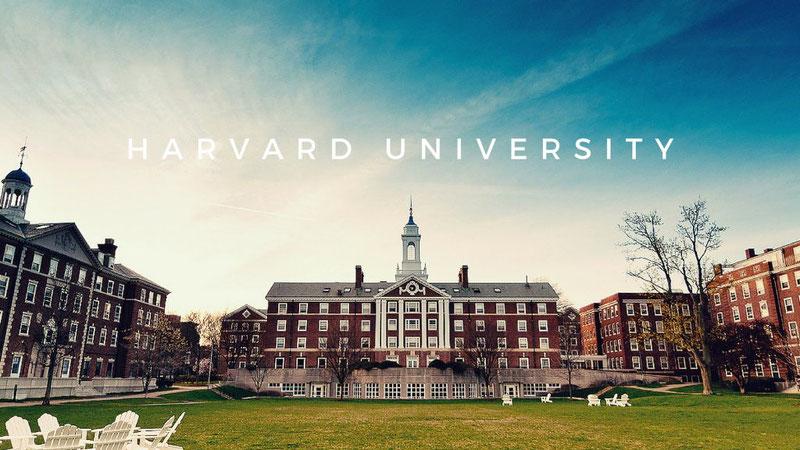 Гарвард - родина кейсов