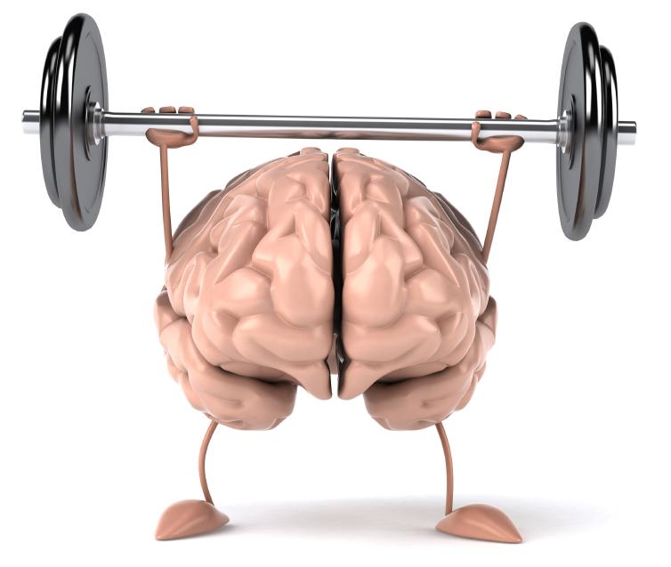 головной мозг как улучшить память