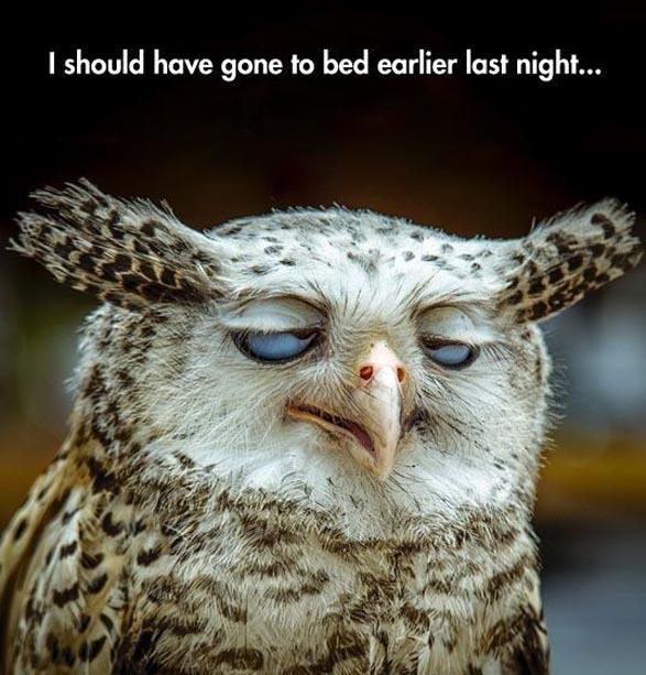 признаки недосыпа