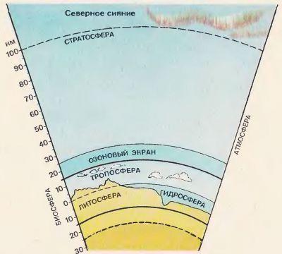 основы экологии учения о биосфере