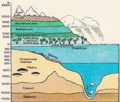 основы учения вернадского биосфере