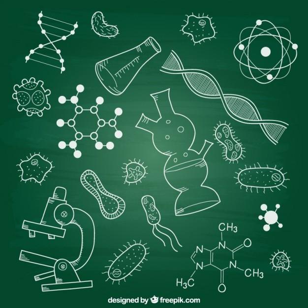 Как можно кратко перессказать биологию 6 класс