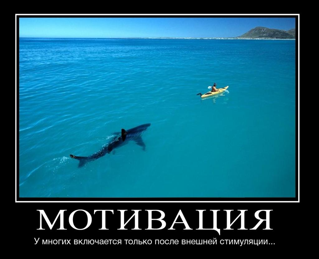 Мотивация учиться