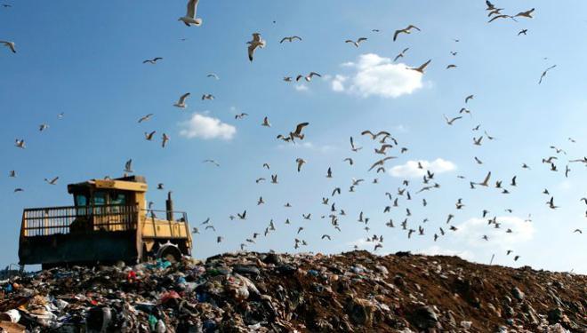 основы экологии и рационального природопользования гурова