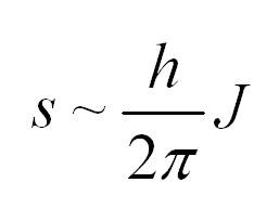 Спин в физике