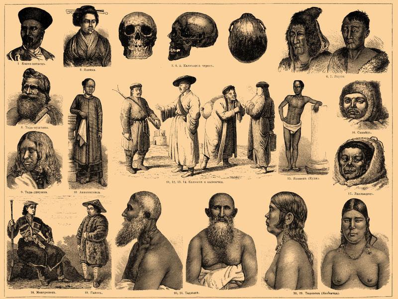 Знание истории необходимо при изучении этнологии и антропологии